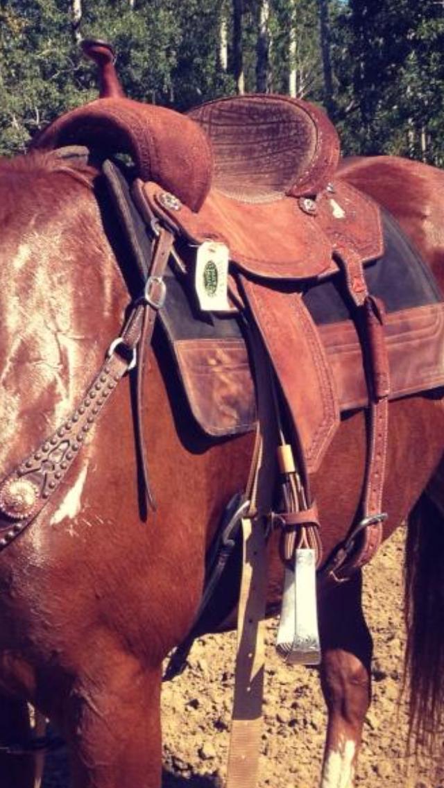 Barrel Racing Products I Love – Lipstick & Cowboy Boots